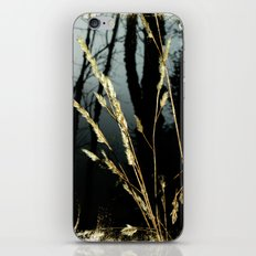 WeedsInFog iPhone & iPod Skin