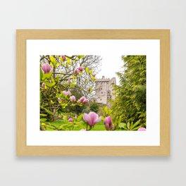 Blarney Castle Framed Art Print