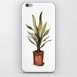 Potted plant iPhone Skin
