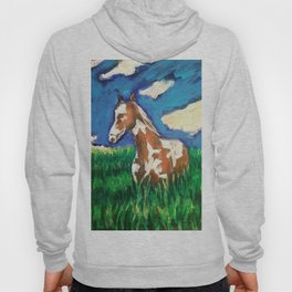 Painted fields Hoody