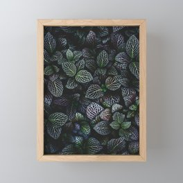 Flora Framed Mini Art Print