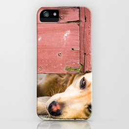 Dog Tired iPhone Case