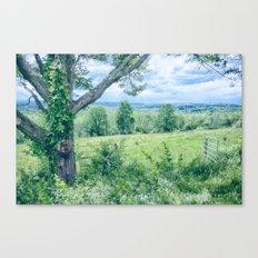 Never Ending Field Canvas Print