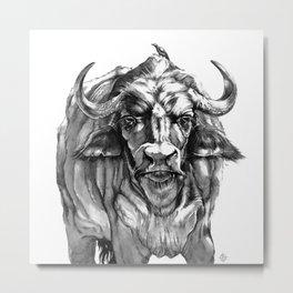 African Water Buffalo Metal Print