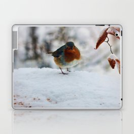 Robin Redbreast Laptop & iPad Skin