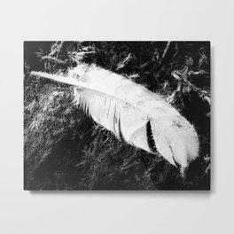 FEATHERWEIGHT Metal Print