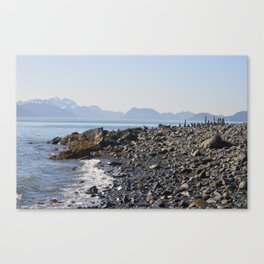 sunny landing Canvas Print