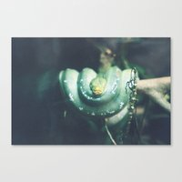 slytherin Canvas Prints featuring slytherin by Aishah Majri