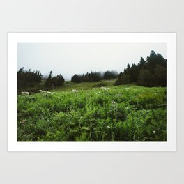 Foggy Mountain Meadow Art Print