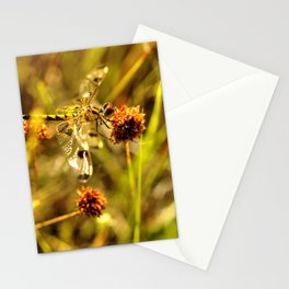 Black-tailed Skimmer Dragonfly Stationery Cards