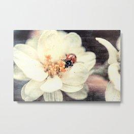 Ladybug Love #society6 #artprints #buyart #decor Metal Print