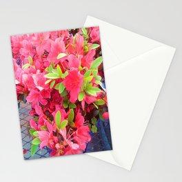Sweet Fuchsia   Stationery Cards