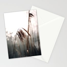 Nature Photography Fine Art Stationery Cards
