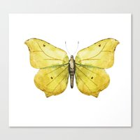 Canvas Prints featuring Butterfly 06 by Aloke Design