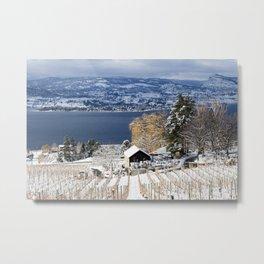 Winter Vineyard Landscape Okanagan Valley Metal Print