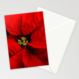 Poinsettia_Christmas Flower Stationery Cards