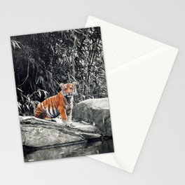Tiger Cub Stationery Cards