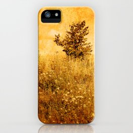 Old Picture of Landscape iPhone Case