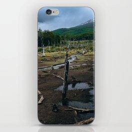 Castorera II iPhone Skin