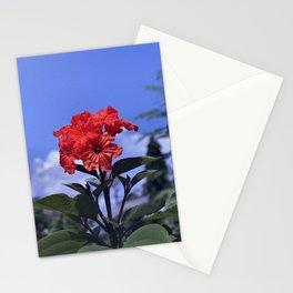 Geiger Tree - Cordia sebestena Stationery Cards