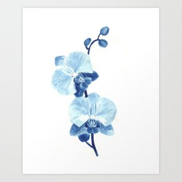 Orchid watercolor painting Art Print
