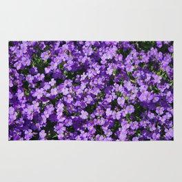 Violets Rug
