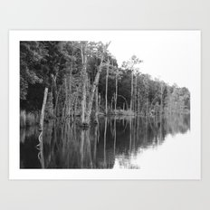 lonely shore Art Print