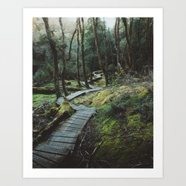 The Enchanted Forest - Cradle Mountain Art Print