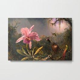 Cattleya Orchid and Three Brazilian Hummingbirds by Martin Johnson Heade. Metal Print
