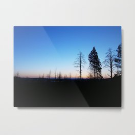 Life with death Metal Print