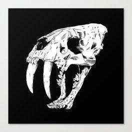 Sabertooth Tiger Skull Canvas Print