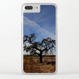 Lone Oak Tree, Laguna de Santa Rosa, Sonoma County Clear iPhone Case