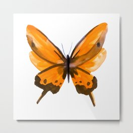 Butterfly no 2 Metal Print