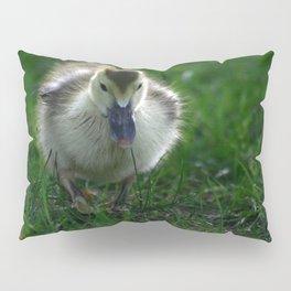 Cute Duckling Walking on a Lawn Pillow Sham