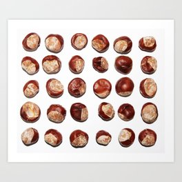 Conkers in a Row Art Print