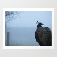 Peacock in the Mist Art Print