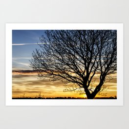 Tree Sunrise 2 Art Print