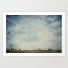 Cow path Art Print