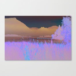 Water Reeds Canvas Print
