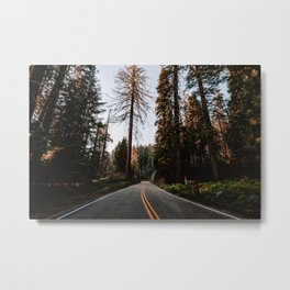 Summer Drive Through the Forest Metal Print