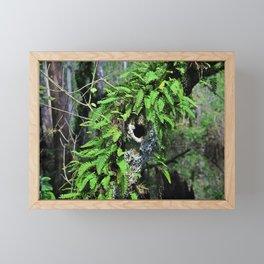 In High Regard- horizontal Framed Mini Art Print