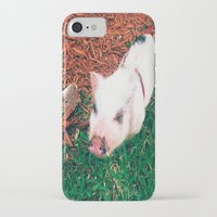 piglet iPhone & iPod Cases featuring Piglet {Instagram} by JJBegonia