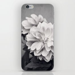 Black and White Dahlia Flower Photography, Grey Floral, Gray Neutral Nature Petals iPhone Skin