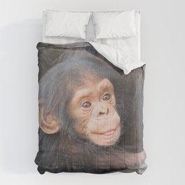 Chimpanzee Baby Comforters