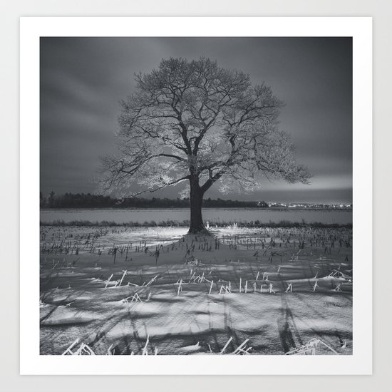 Coated in Winter Art Print