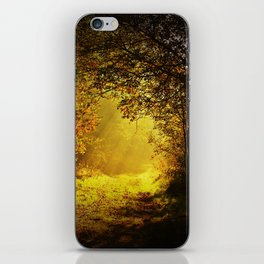 Via nel bosco iPhone Skin