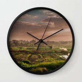 Rice fields Wall Clock