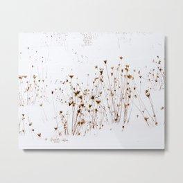 Winter Meadow Metal Print