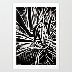 Jaggered Art Print