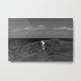 Volcanic View Metal Print